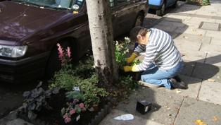 5. Planting (Julie).JPG